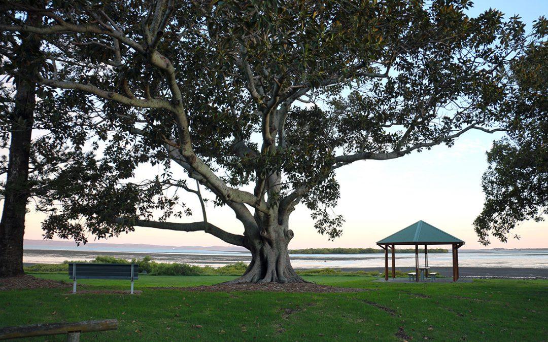 Brisbane South PHN announces first Indigenous Chair